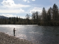 Steelhead fishing North Santiam River