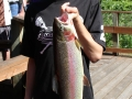 Boy Rainbow Trout