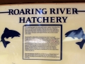 Roaring River Hatchery Sign